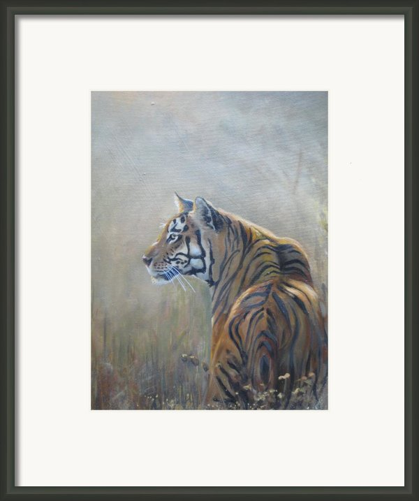 Look Out Framed Print By Todd  Gates