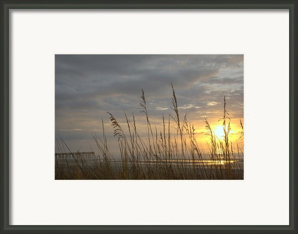 Looking Back Framed Print By Lynn Davenport