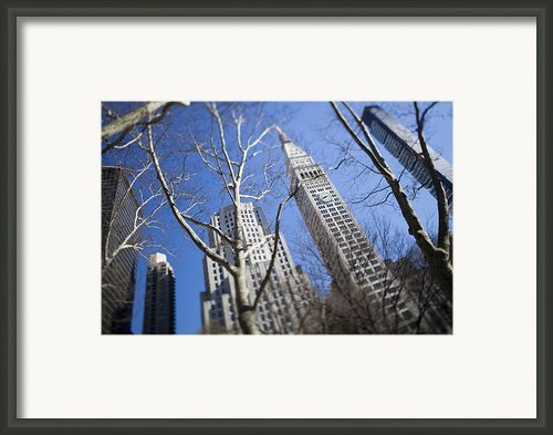 Looking Up Through Trees At Skyscrapers Framed Print By Axiom Photographic