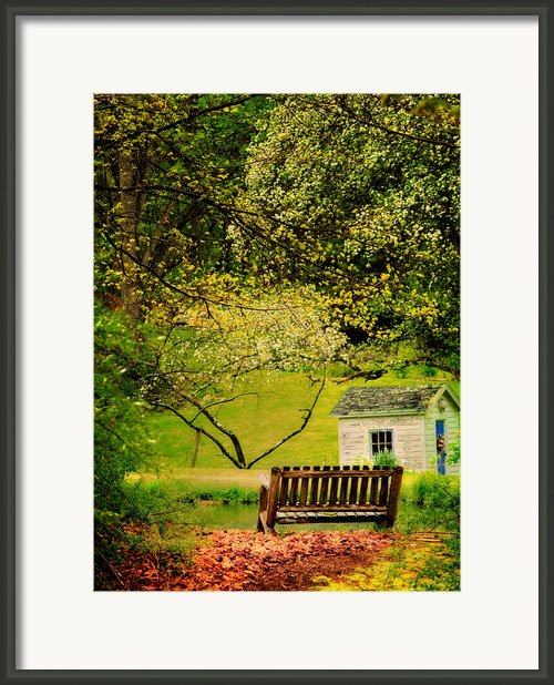 Lost In My Thoughts - Still Life Framed Print By Thomas Schoeller