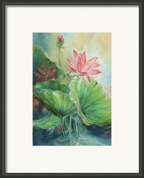 Lotus Of Hamakua Framed Print By Wendy Wiese