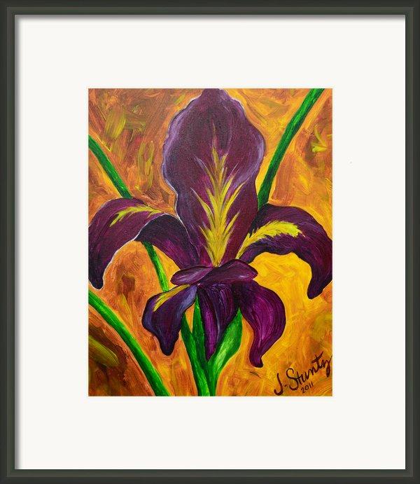 Louisiana Iris Fleur De Lis Framed Print By Jessica Stuntz