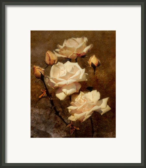 Love Letter Ii Framed Print By Jai Johnson
