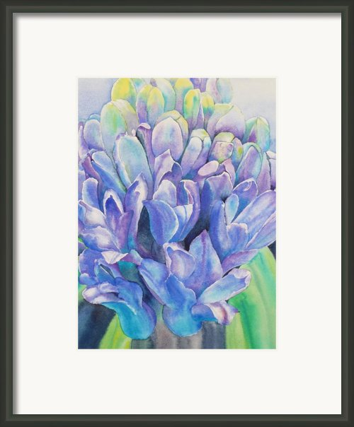 Lovely Lupine Framed Print By Ruth Kamenev
