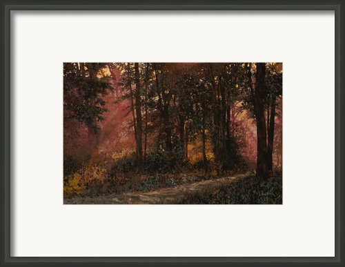 Luci Nel Bosco Framed Print By Guido Borelli