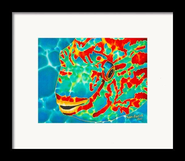 Lucky Parrotfish Framed Print By Daniel Jean-baptiste