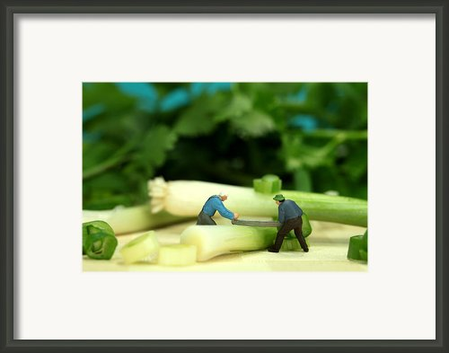 Lumberjack Cutting Green Onion In Cilantro Jungle Framed Print By Mingqi Ge