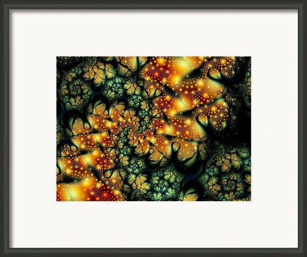 Lurking Framed Print By Lauren Goia