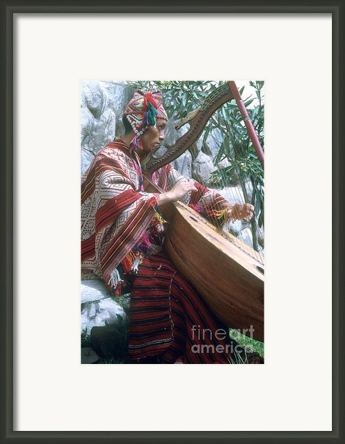 Lute Player Framed Print By Photo Researchers, Inc.