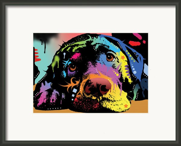 Lying Lab Framed Print By Dean Russo