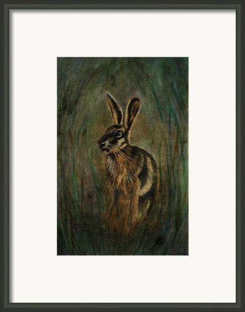 Mad March Hare Framed Print By Lynn Hughes