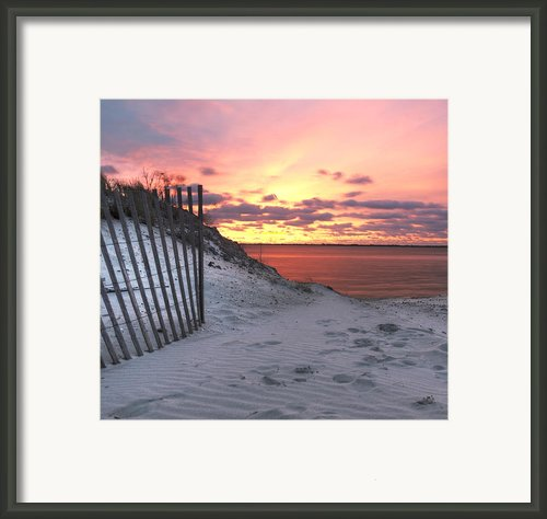 Magenta Sunrise Framed Print By Vicki Jauron