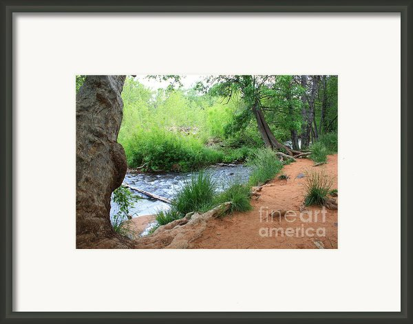 Magical Trees At Red Rock Crossing Framed Print By Carol Groenen
