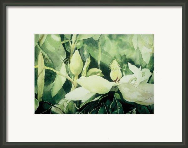 Magnolium Opus Framed Print By Elizabeth Carr