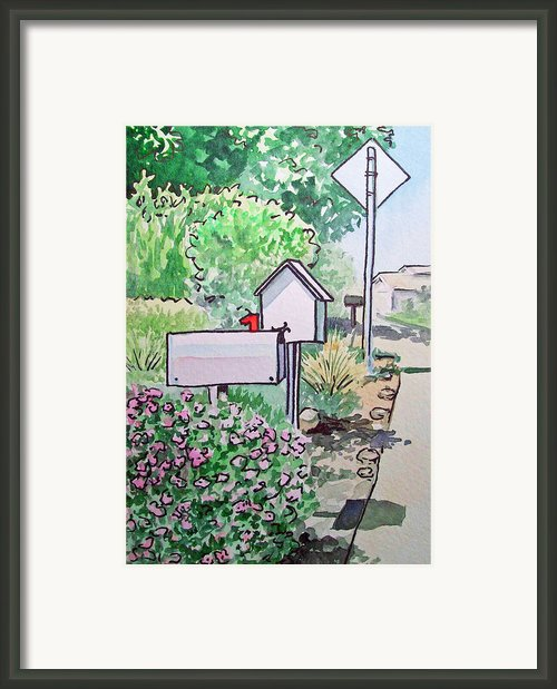 Mail Boxes Sketchbook Project Down My Street Framed Print By Irina Sztukowski
