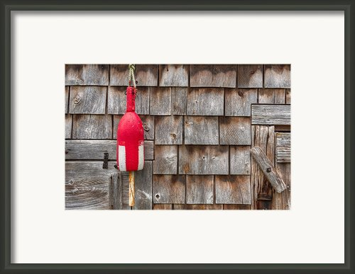 Maine Lobster Shack Framed Print By Steve Gadomski