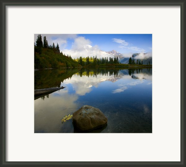 Majesty Revealed Framed Print By Mike  Dawson