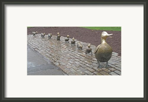 Make Way For Ducklings Framed Print By Barbara Mcdevitt