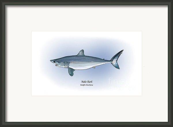 Mako Shark Framed Print By Ralph Martens