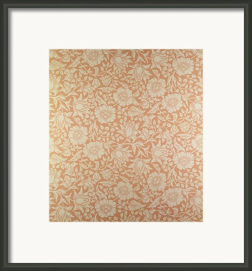 Mallow Wallpaper Design Framed Print By William Morris