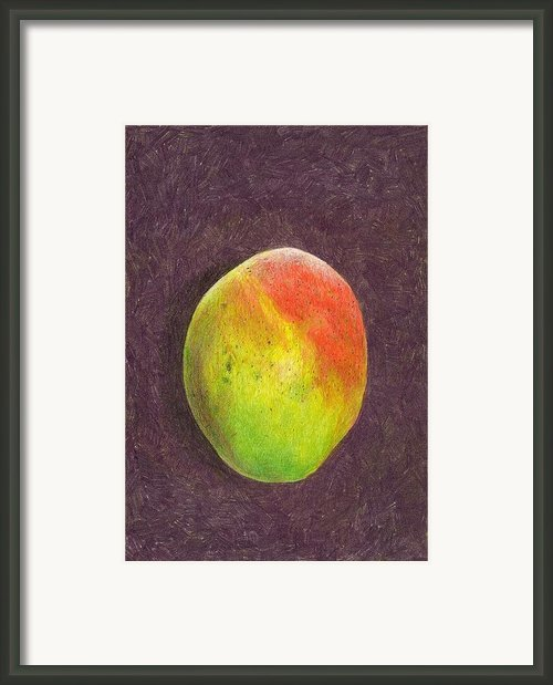 Mango On Plum Framed Print By Steve Asbell