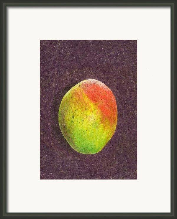 Mango On Plum Framed Print By Steve Asbell