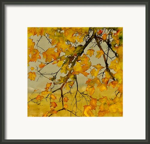 Maples In Autumn Framed Print By Carolyn Doe