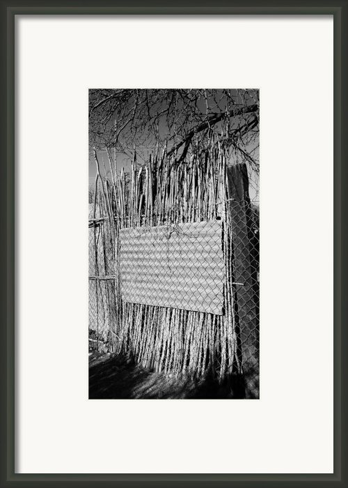 Marquis Framed Print By Skip Hunt