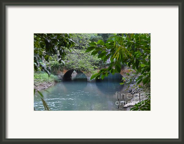 Martha Brae River Framed Print By Carol  Bradley - Double B Photography
