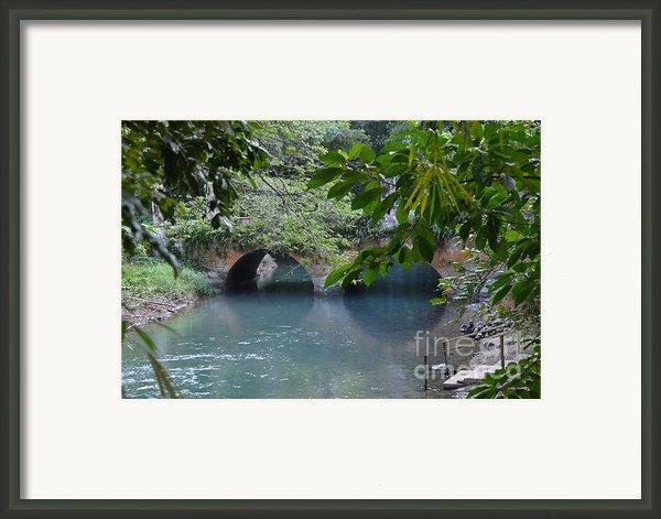 Martha Brae River Framed Print By Carol  Bradley - Double B Photography