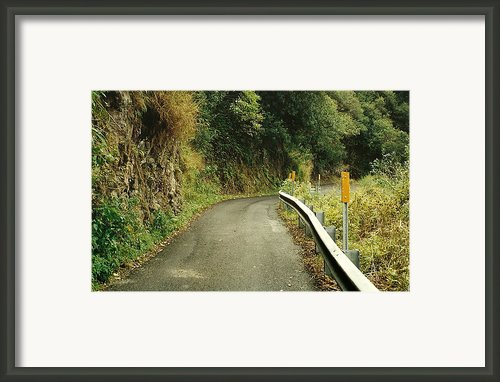 Maui Highway Framed Print By Marilyn Wilson
