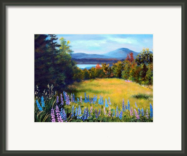 Meadow Lupine Ii Framed Print By Laura Tasheiko