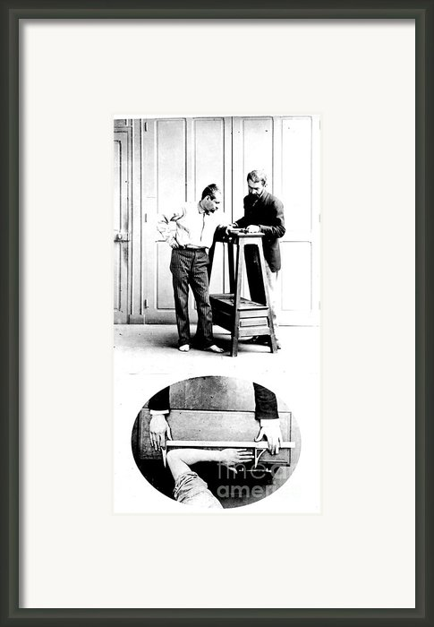 Measurement Of The Cubit, Bertillon Framed Print By Science Source