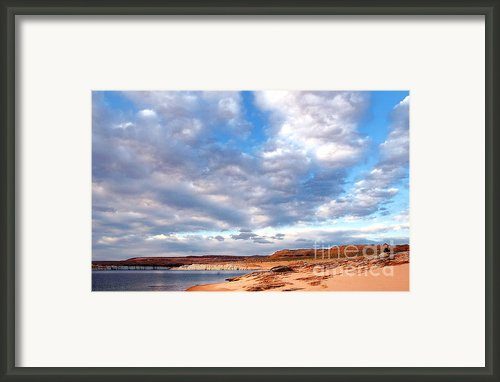 Meditation Framed Print By Thomas R Fletcher