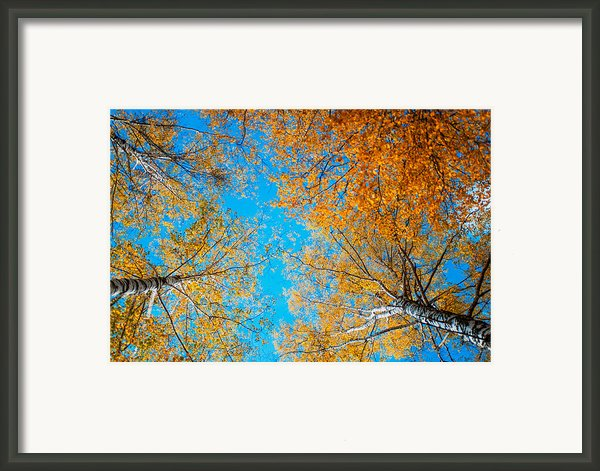 Meet In Heaven. Autumn Glory Framed Print By Jenny Rainbow