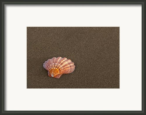 Memories Framed Print By Jeffrey Campbell