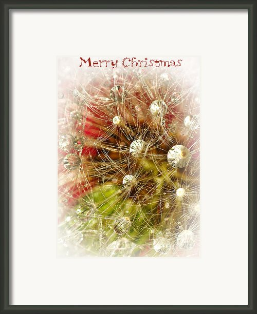 Merry Christmas Framed Print By Kaye Menner