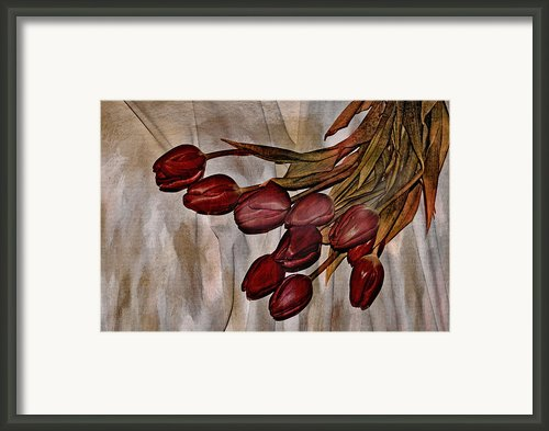 Mes Tulipes Framed Print By Aimelle