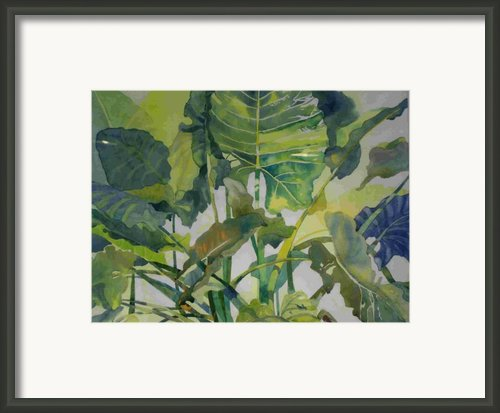 Mess Of Greens Framed Print By Elizabeth Carr
