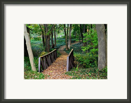Metroparks Pathway Framed Print By Robert Harmon