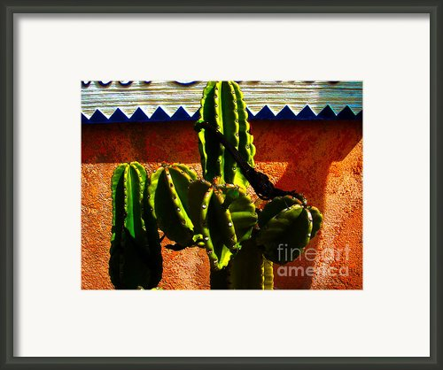 Mexican Style  Framed Print By Susanne Van Hulst