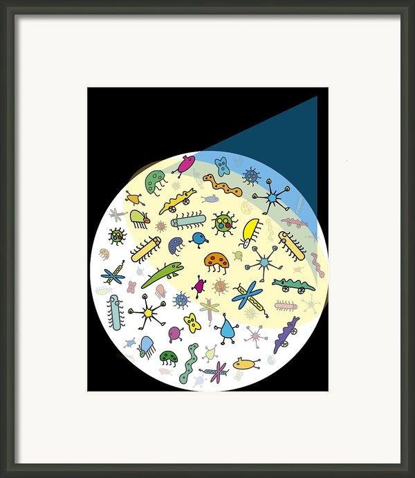 Microbes Framed Print By David Nicholls