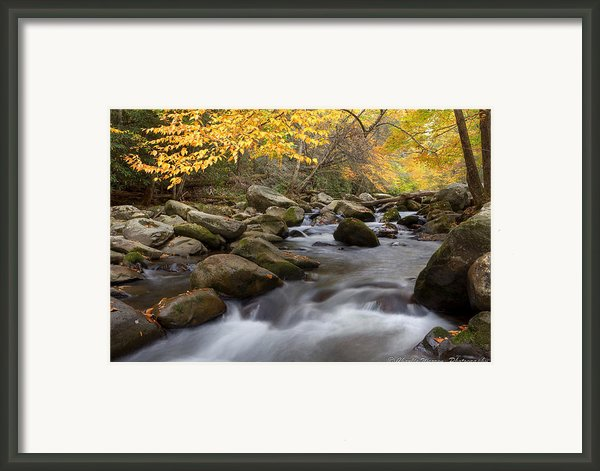 Mid Stream Framed Print By Charles Warren
