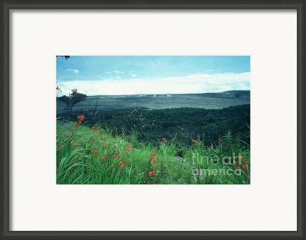 Million Dollar View Framed Print By Alcina Morello