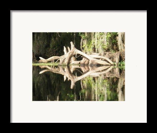 Mirrorknot Framed Print By Warren Clark
