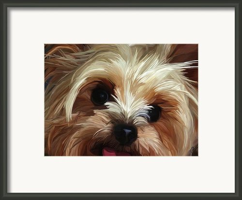 Mischief Framed Print By Patti Siehien