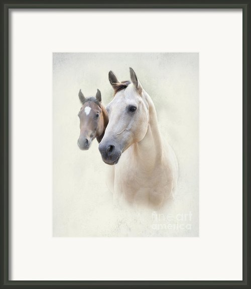 Misty Framed Print By Betty Larue