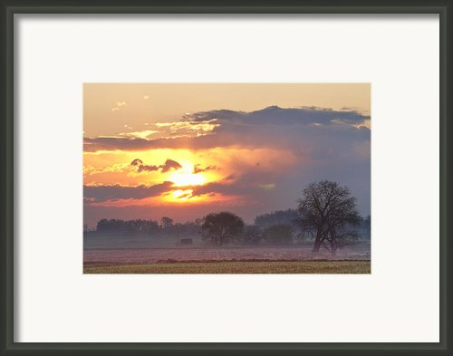 Misty Country Sunrise  Framed Print By James Bo Insogna