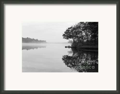 Misty Cove Framed Print By Luke Moore