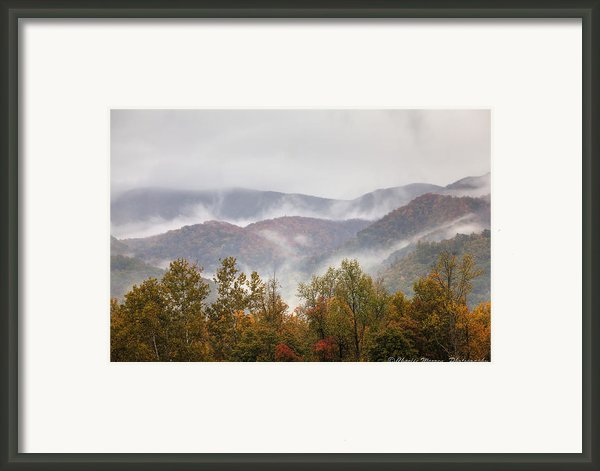 Misty Morning I Framed Print By Charles Warren